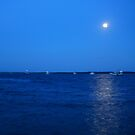 Moon over the Water by MardiGCalero