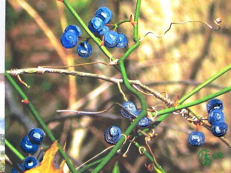 berries by michaela gilt