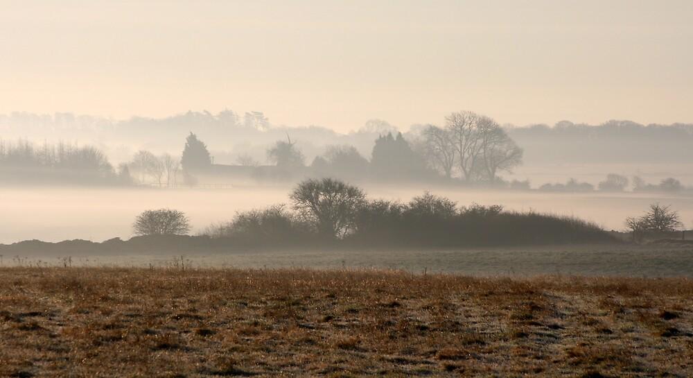 One Misty Moisty Morning - 2 by Martin Carr
