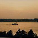 Mississippi Steamer by BigAl1