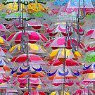 Awaitng the rain. by Paul Pasco