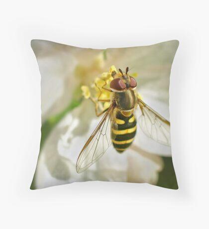 drinking nectar through a straw Throw Pillow