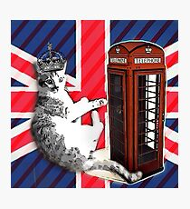 uk union jack flag london telephone booth funny royal kitty cat Photographic Print