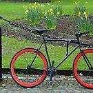 Student bike by Arie Koene