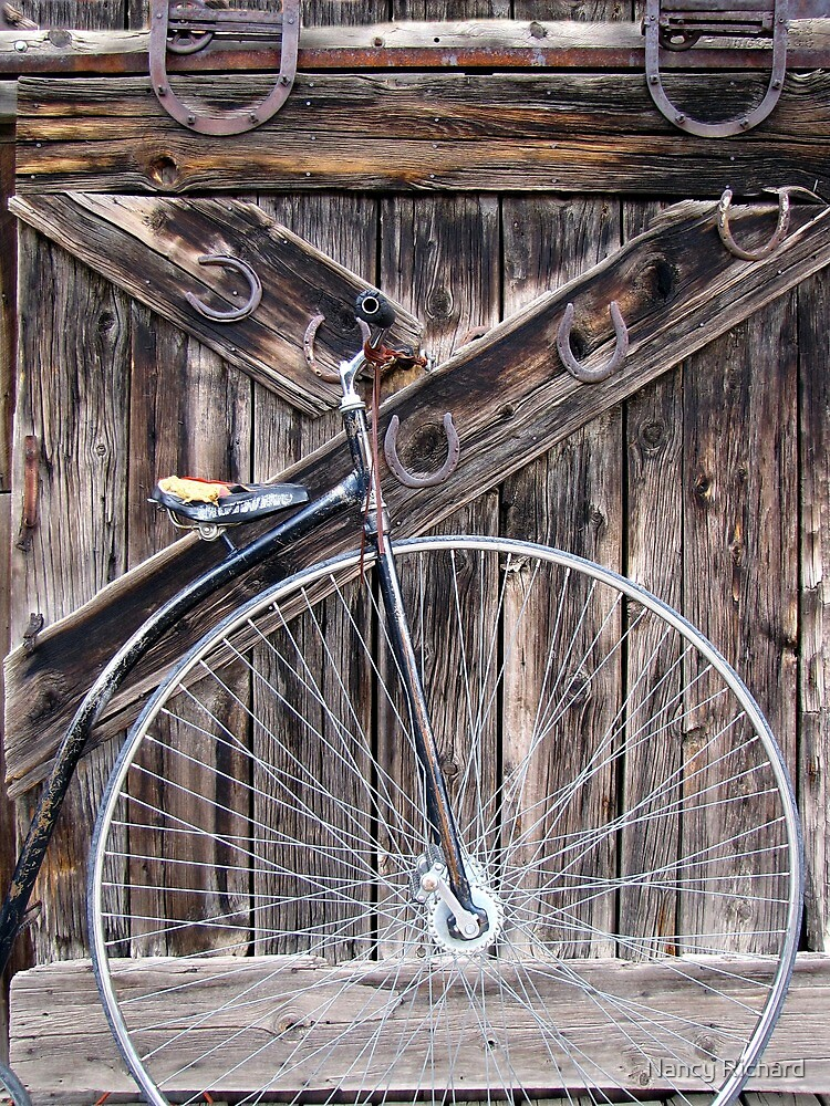 Bicycle built for one? by Nancy Richard