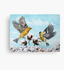 Golden Finches Picking Cotton Metal Print