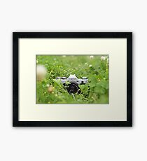 Canon and Clover Framed Print