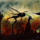 firefly by Bernhard Adams