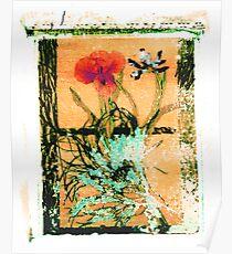 Flower Transfer Poster