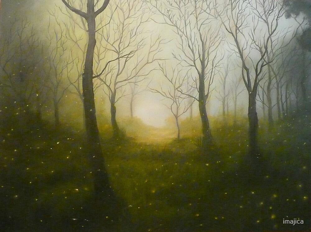 fire in the mist by imajica