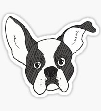 Grumpy Boston Terrier Sticker
