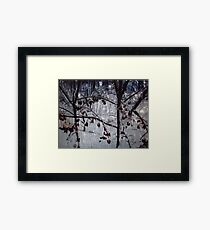 Winter in Rhode Island Framed Print