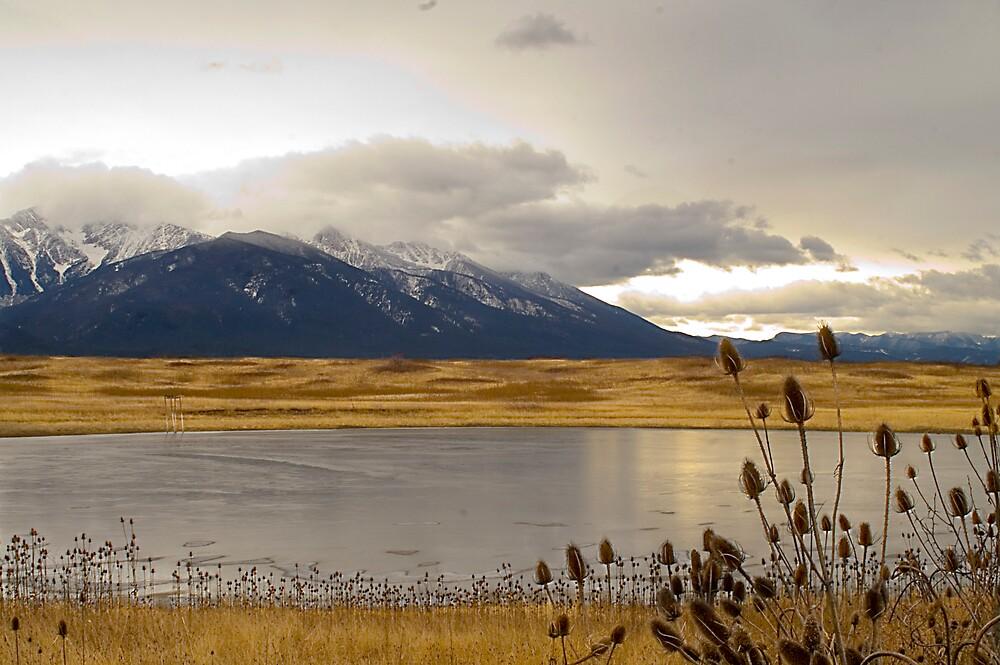 Montana Wetlands by nituathaill