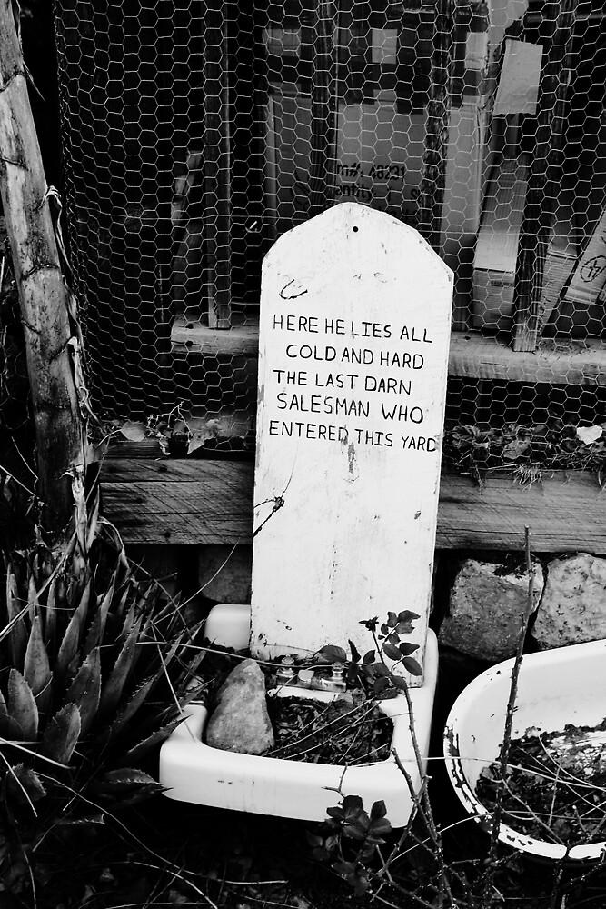Dead Salesman by Janina