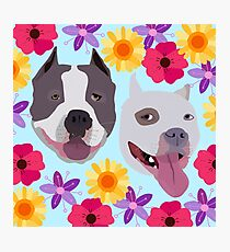 Pit Bulls With Flowers  Photographic Print