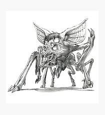 The Balinese Screaming Spiderbat Photographic Print
