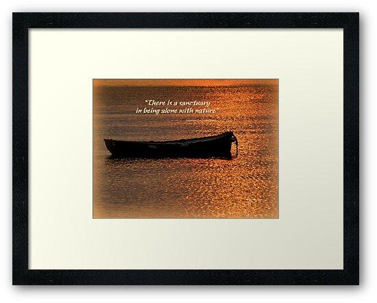 A Golden Moment by Charmiene Maxwell-Batten