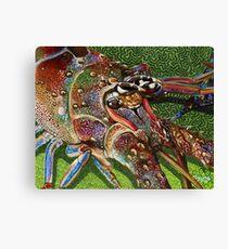 Lobster Head Canvas Print