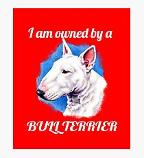 I am owned by a Bull Terrier  Photographic Print