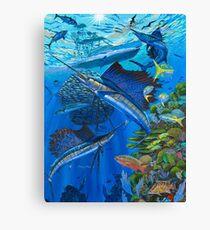 Sailfish Reef Canvas Print