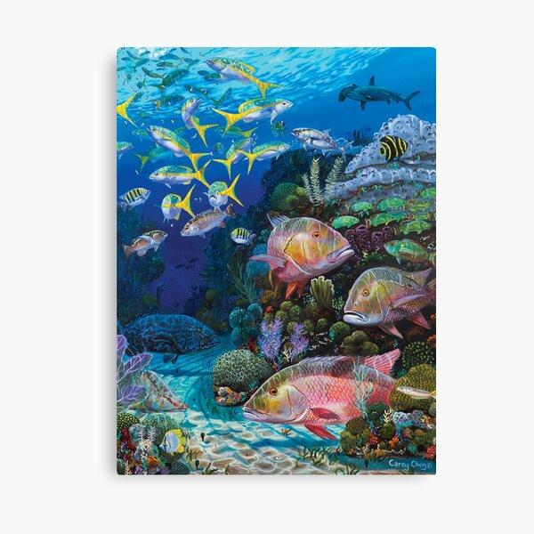 Mutton Reef Canvas Print