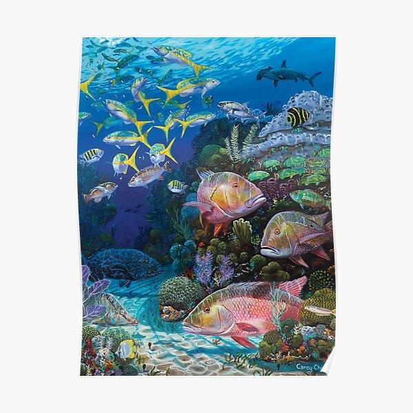 Mutton Reef Poster