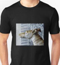 Vatican museum Dog T-Shirt