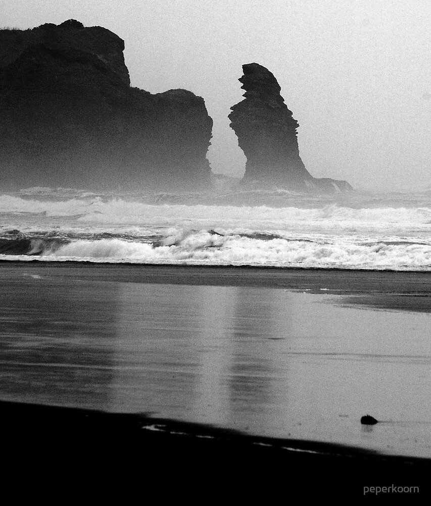 Lion Rock @ Piha by peperkoorn