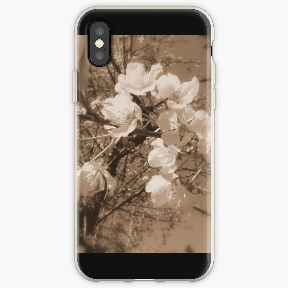 cherry blossoms in the sky, sepia iPhone Case & Cover
