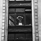 Window by Elodie