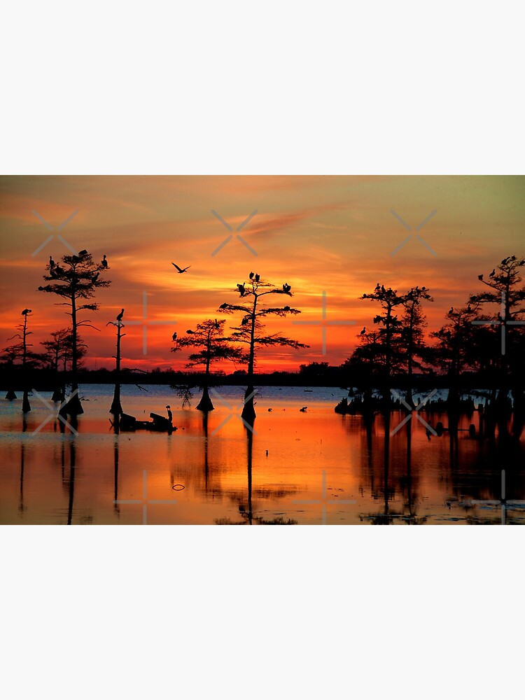 Sunset on the Bayou by Bluemarlin
