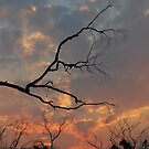 Cool burn sunset - hot burn victims by GeoGecko