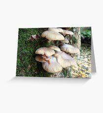 Fungi V Greeting Card