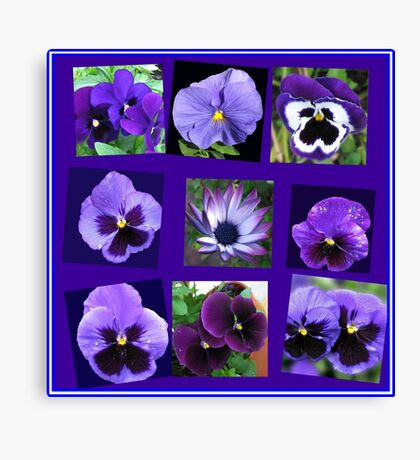 All Blues - Summer Flowers Collage Leinwanddruck