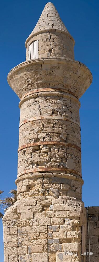 Cesarea Minaret by Mary  Lane