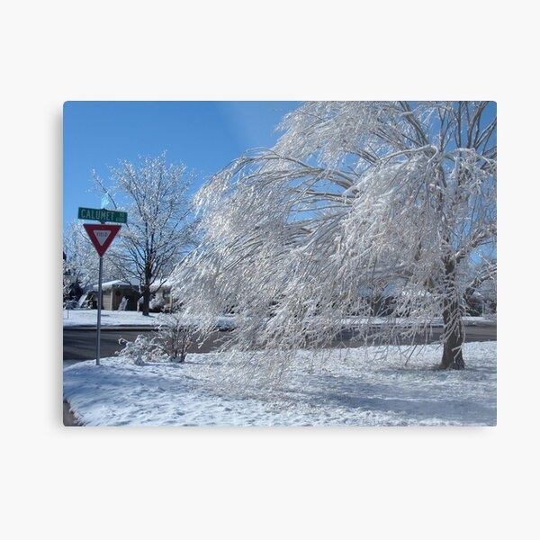 Texas Ice Storm Metal Print