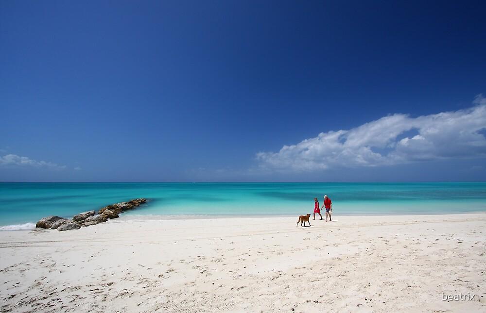 walk on the beach by beatrix