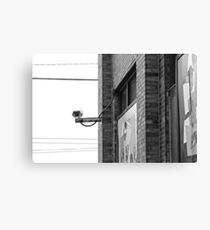 Survey the Streets Canvas Print