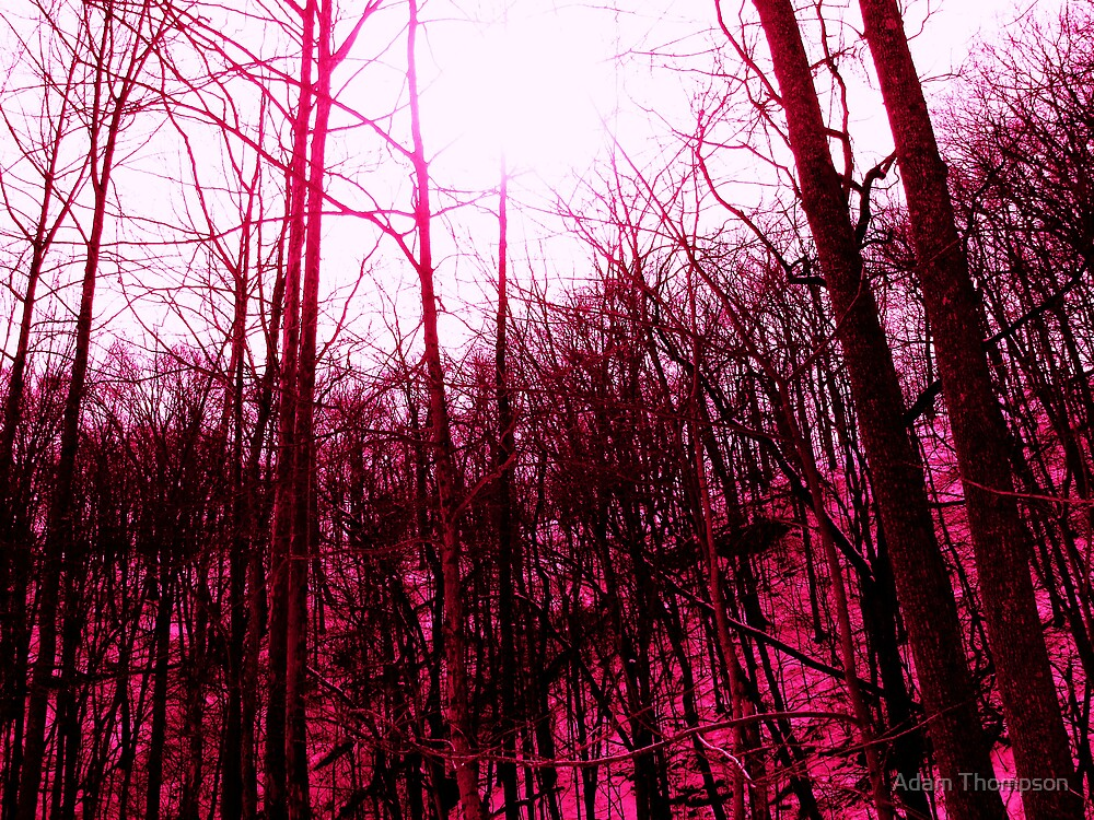 sky's falling by Adam Thompson