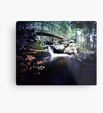 Abbey Brook 2, East Middlebury, Vermont Metal Print