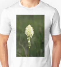 Baby Beargrass T-Shirt