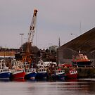 Moored for Six by Niamh Harmon