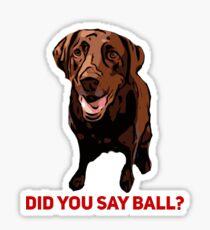 Chocolate Lab Did you say Ball? Sticker