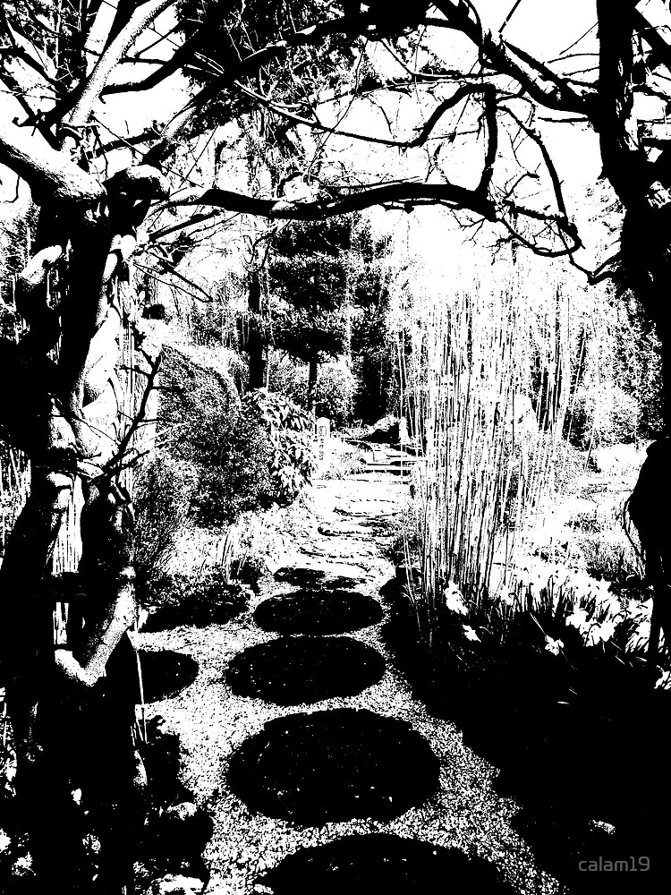 Drawn Pathway by calam19