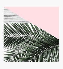 palm rosé Photographic Print