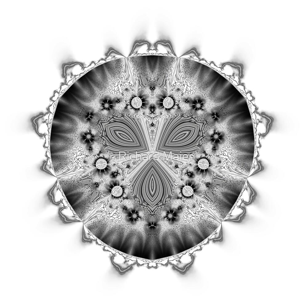 Amoeba 7 by Richard Maier
