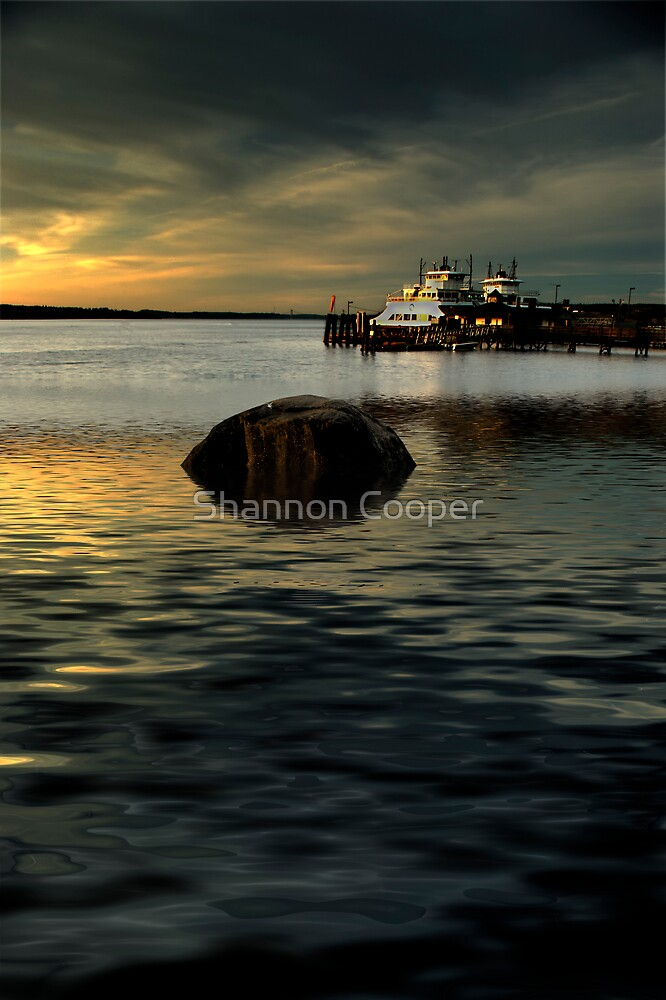 High Tide by Shannon Beauford