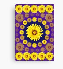 Yellow Everlastings Canvas Print