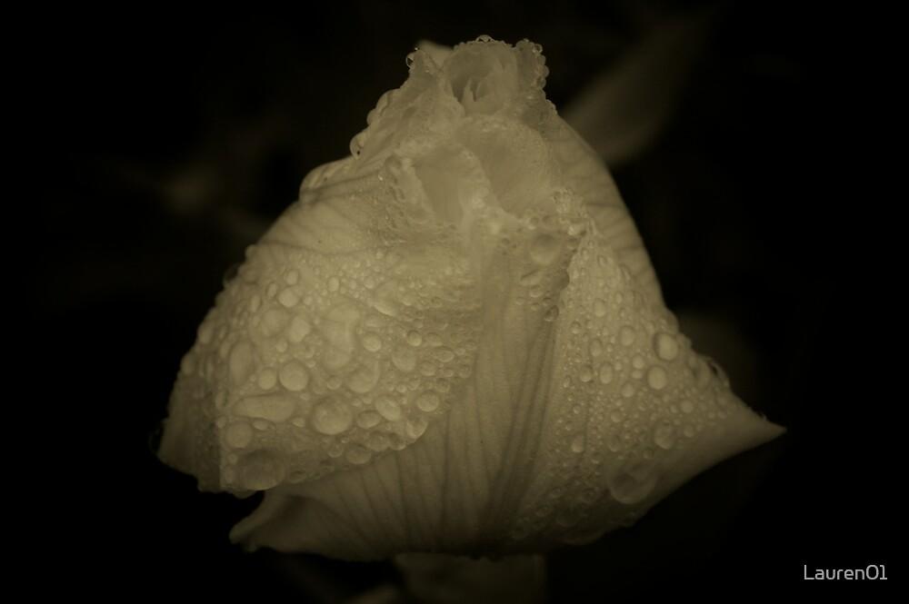 Flower in the Dark by Lauren01