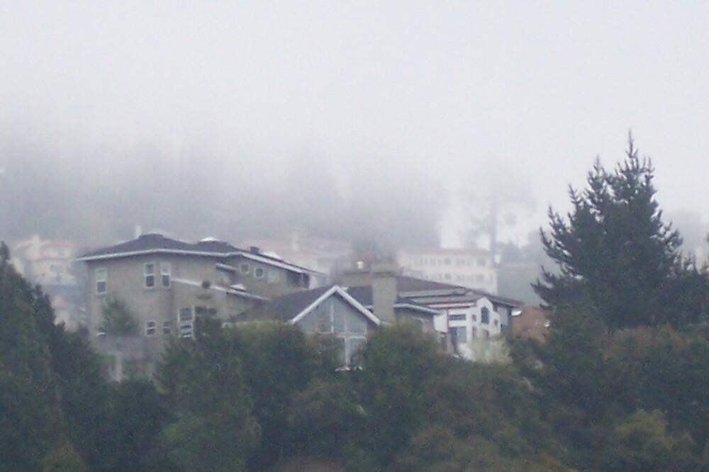 Foggie Morning by clou